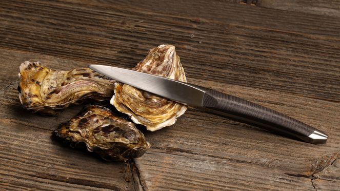 sknife oyster knife made of surgical steel